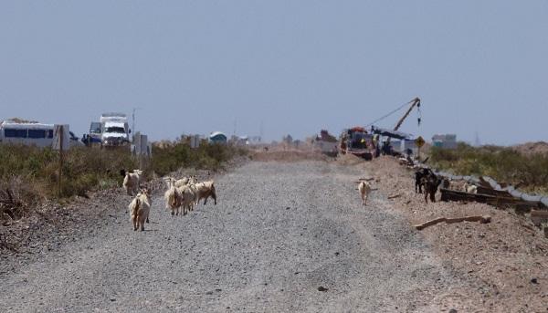 Imagen tomada por el equipo de trabajo- Territorio Mapuce